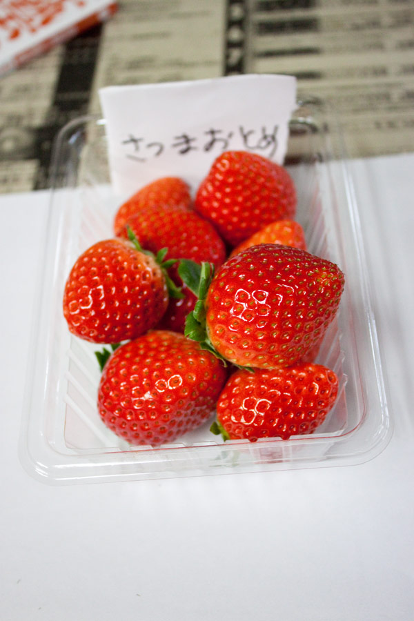 IMG_4592satsuma.jpg