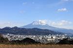 三浦日本平農園から見た富士山